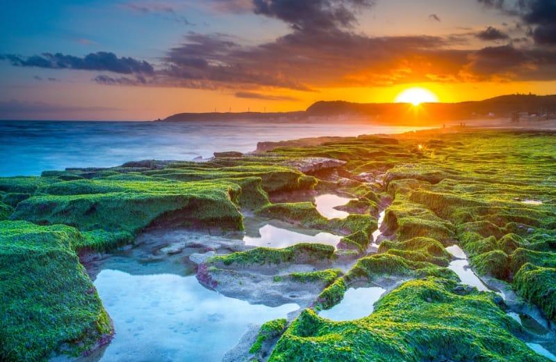 Đài Loan là một trong những nơi có rạn san hô đẹp nhất thế giới