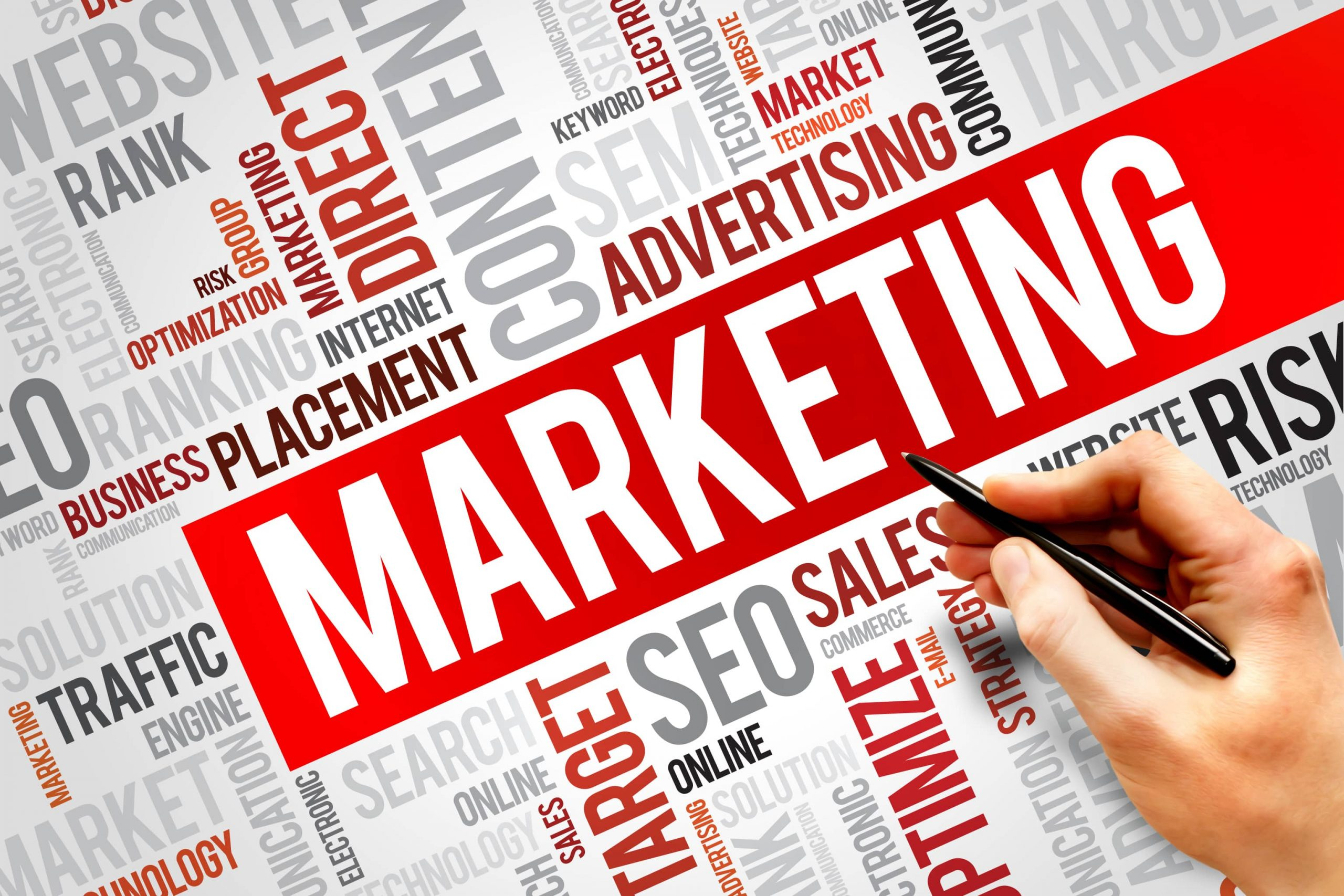 Học ngành Marketing tại đại học Ngô Phụng.