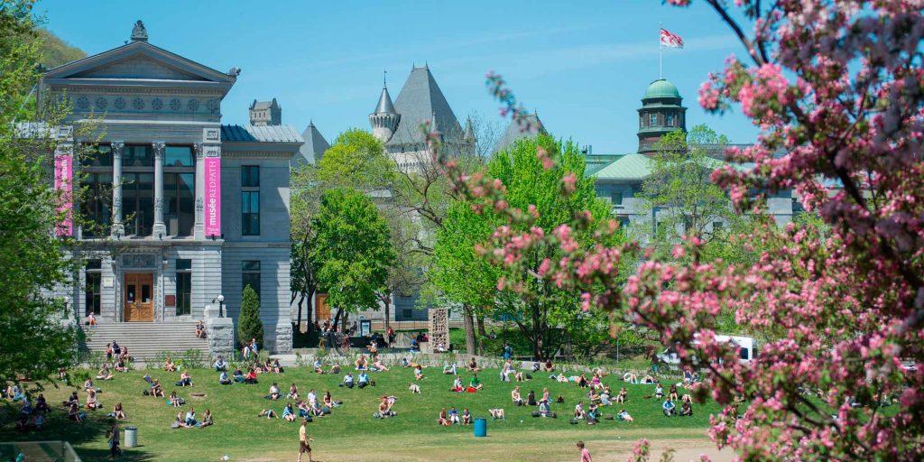 Khuôn viên thơ mộng tại đại học McGill.