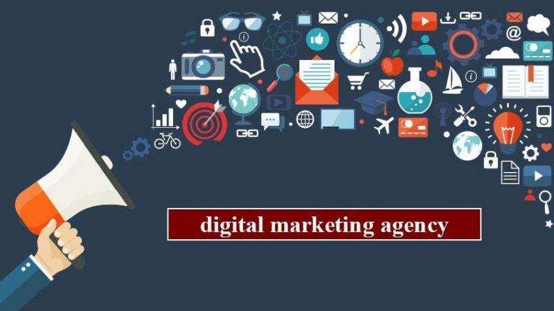 Agency là gì? Agency gồm những loại hình nào?