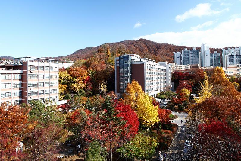 Trường Cao đẳng Shingu College Hàn Quốc