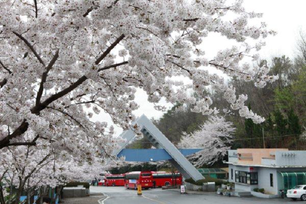 Cổng chào của trường cao đẳng Suncheon Cheil