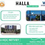 Trường Đại học Halla University