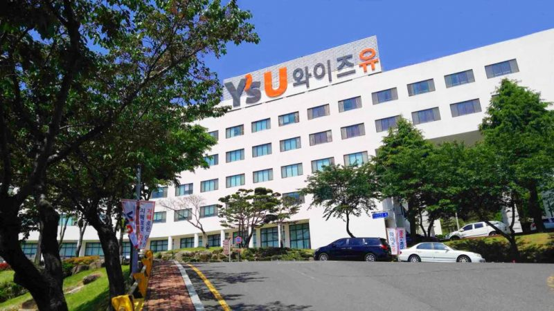 Đại học Youngsan University Hàn Quốc đào tạo những ngành gì?