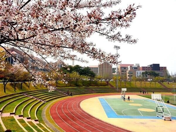 Khu thể thao rộng rãi và đẹp như mơ của trường Đại học Mokwon