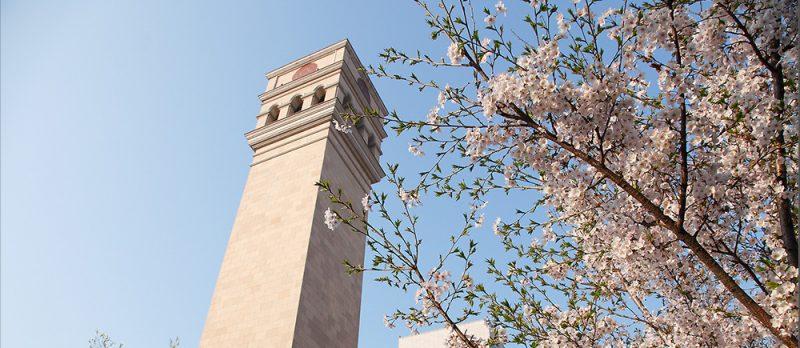Trường đại học Sejong University Hàn Quốc